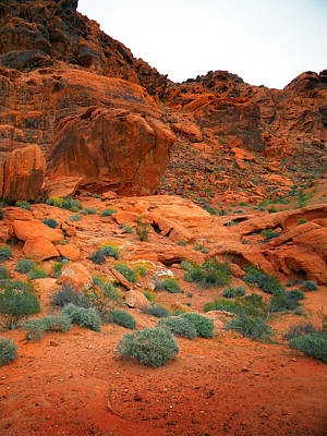 Photograph - Valley Of Fire Red Sandstone Cliffs by Frank Wilson