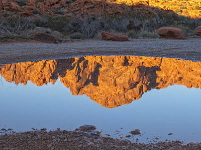 Photograph - Valley Of Fire Reflection Iv by Marianne Campolongo