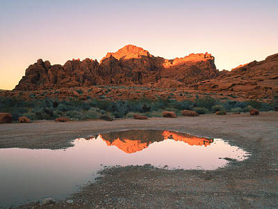 Photograph - Valley Of Fire Reflections I by Marianne Campolongo