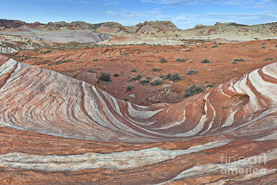 Photograph - Valley Of Fire - The Wave by Sandra Bronstein