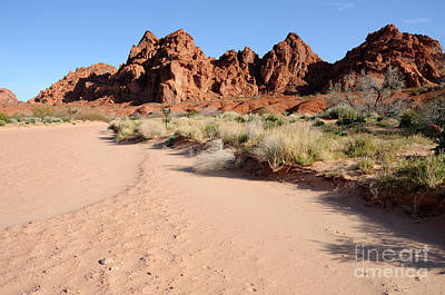 Slickrock Photograph - Valley Of Fire Wash by Gary Whitton