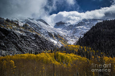 Photograph - Valley Of Gold by Jim McCain