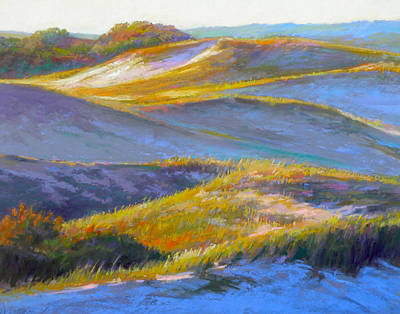 Wall Art - Painting - Valley Of The Dunes by Ed Chesnovitch