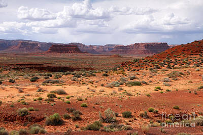 Photograph - Valley Of The Gods 1 by Butch Lombardi
