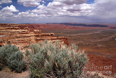 Photograph - Valley Of The Gods View-moki Dugway by Butch Lombardi