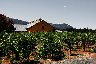 Pastoral Vineyard Photograph - Valley Of The Moon Sonoma California 5d24485 V2 by Wingsdomain Art and Photography