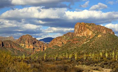 Photograph - Valley Of The Saguaro by Saija  Lehtonen