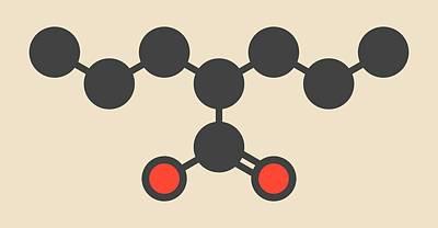 Bipolar Photograph - Valproic Acid Epilepsy Drug Molecule by Molekuul