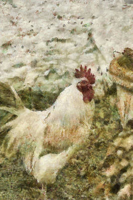 Rooster Mixed Media - Val's Chicken by Trish Tritz