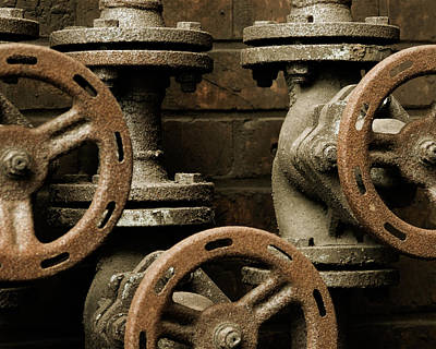 Photograph - Valves by Marinus Ortelee
