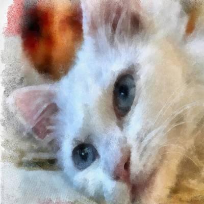 Painting - Van Cat Portrait by Tracey Harrington-Simpson