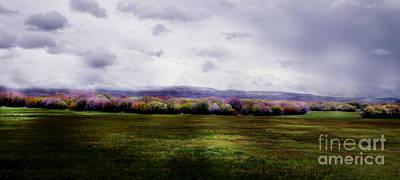 Buckaroo Photograph - Van Drewsey Oregon by Michele AnneLouise Cohen