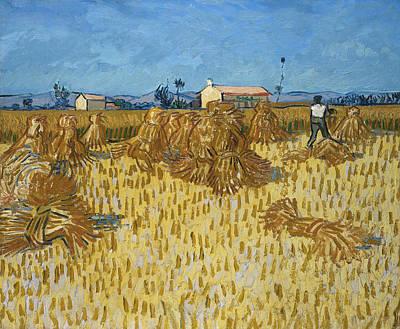 Corn Painting - Van Gogh Corn Harvest by Granger