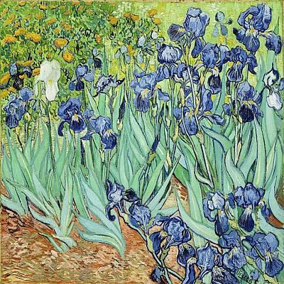 Painting - Van Gogh Irises II by Florene Welebny