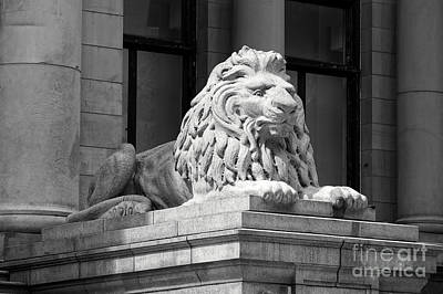 Photograph - Vancouver Art Gallery Lion by John  Mitchell