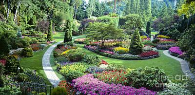 Vancouver Butchart Sunken Gardens Beautiful Flowers No People Panorama Art Print