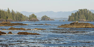Freedmen Photograph - Vancouver Island by Matt Freedman