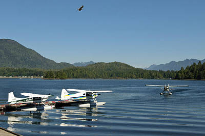Vancouver Photograph - Vancouver Island, Tofino by Matt Freedman