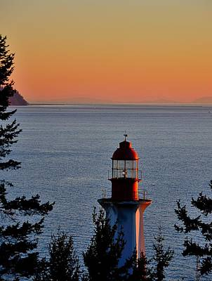 Photograph - Vancouver Lighthouse Park by Steven Richman
