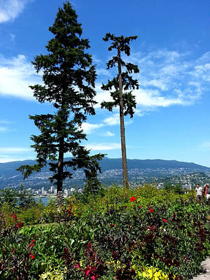 Photograph - Vancouver by Nikki Dalton