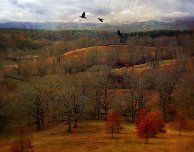 Photograph - Vanderbilt View by Ann Tracy