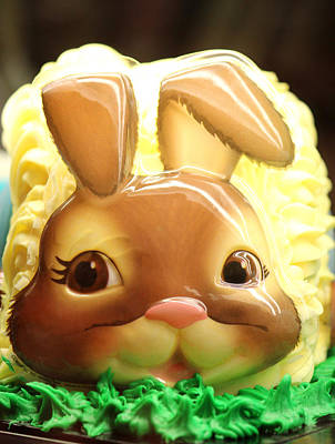 Bunny Photograph - Vanilla Bunny Cake by The Art Of Marilyn Ridoutt-Greene
