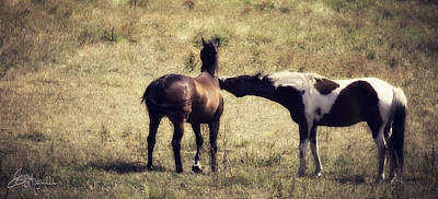 Western Photograph - Vanilla Kiss by Jacque The Muse Photography