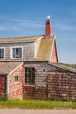 Coastal Maine Photograph - Vanishing Maine by Scott Thorp