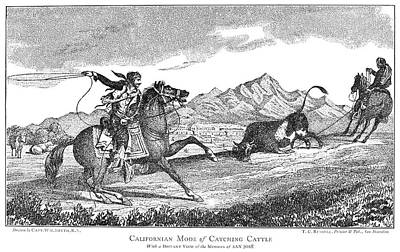 Vaquero Painting - Vaqueros, 1839 by Granger