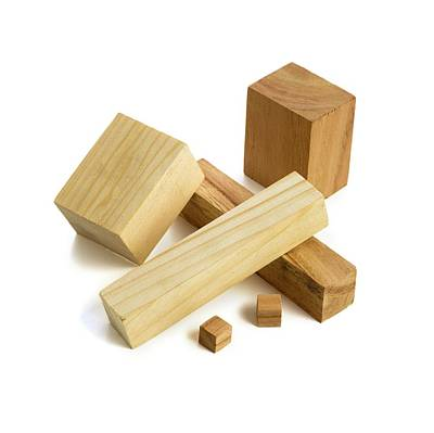 Variety Of Wooden Blocks Art Print by Science Photo Library