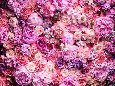 Close Up Photograph - Various Cut Flowers, Detail by Jonathan Knowles