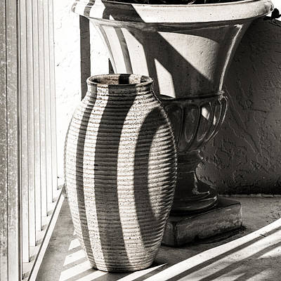 Photograph - Vase Shadows by Robin Zygelman