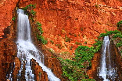 Vaseys Paradise Twin Falls Art Print by Inge Johnsson