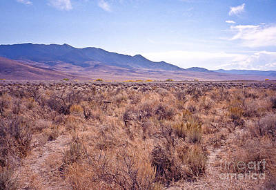 Photograph - Vast Desolate And Silent - Lyon Nevada by John Waclo