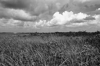Photograph - Vast Landscape by Andres LaBrada