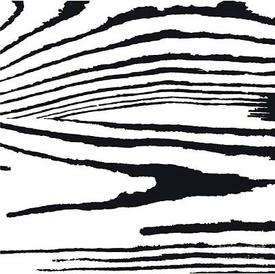 Bright Wall Art - Digital Art - Vector  Grunge  Texture  In Black And by Olga Borysenko