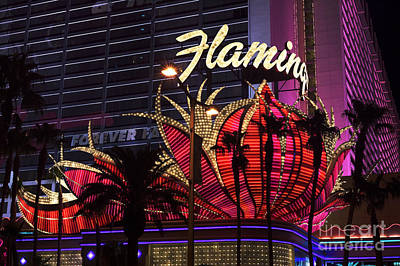 Photograph - Vegas Flamingo by John Rizzuto