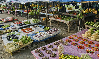 Photograph - Vegetable Market In Timor-leste by Dan Suzio