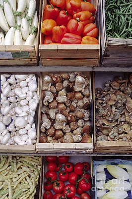 Photograph - Vegetables And Fungi Gordes France by Craig Lovell