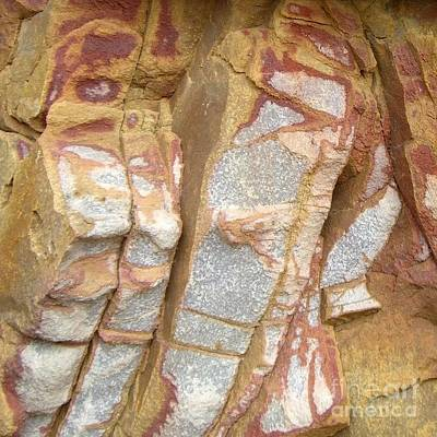 Photograph - Veined Rock by Barbie Corbett-Newmin
