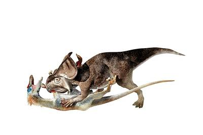 Dromaeosaurid Photograph - Velociraptor Attacking Protoceratops by Jose Antonio Pe�as