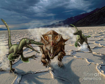 Looking At Camera Digital Art - Velociraptor Chase A Bagaceratops by Yuriy Priymak