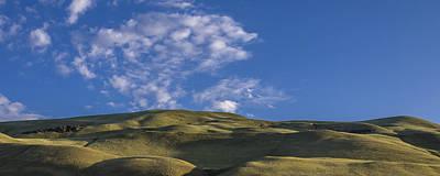 Photograph - Velvet Hills by Albert Seger