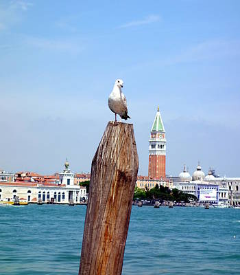 Audrey Hepburn - Venetian Seagull by Valentino Visentini