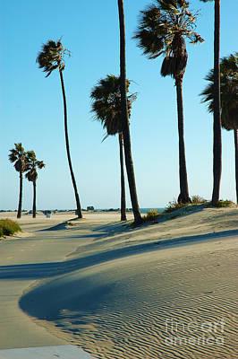 Venice Beach Palms Photograph - Venice Beach 1 by Micah May