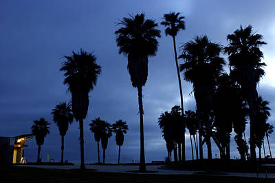 Photograph - Venice Beach Blue by Rollie Robles