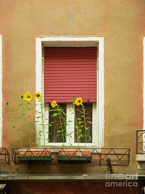 Painting - Venice Italy Yellow Flowers Red Shutter by Robyn Saunders