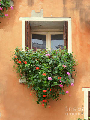 Mixed Media - Venice Shutters Flowers Orange Wall by Robyn Saunders