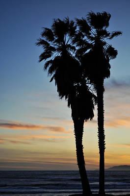 Ventura Palm Sunset Art Print