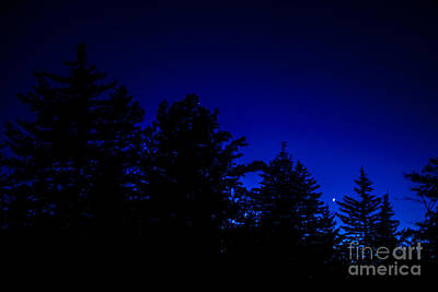 Venus And Saturn Over Cranberry Wilderness Art Print by Thomas R Fletcher